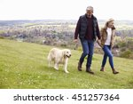 Stock photo mature couple taking golden retriever for walk 451257364