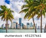 Miami  Florida  Usa Tropical...