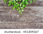old wooden planks and green... | Shutterstock . vector #451309267