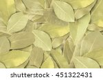 bay leaf for background. spices ... | Shutterstock . vector #451322431