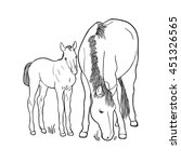 Sketch Of Horse And Foal...