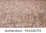 Thatch Roof Background Pattern...
