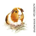 Watercolor Guinea Pig Animal...