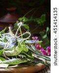 green beans  selective focus | Shutterstock . vector #451414135