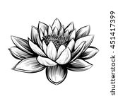 Vector Water Lily. Lotus...