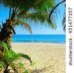 sea scene closeup  | Shutterstock . vector #451477357
