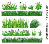 green grass showing roots... | Shutterstock .eps vector #451491184