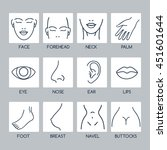 parts of the human body vector... | Shutterstock .eps vector #451601644