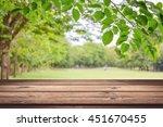 empty wooden table with garden... | Shutterstock . vector #451670455