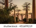 sunset in the famous avenida de ... | Shutterstock . vector #451699219