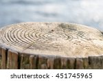 Small photo of Selective focus on annual ring of timber beside lake