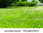 green lawn yard   Shutterstock . vector #451802401