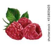 raspberries on white background | Shutterstock . vector #451805605