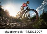 sport. mountain bike cyclist... | Shutterstock . vector #452019007