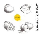 hand drawn mango fruits set...   Shutterstock .eps vector #452031427