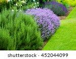 Beautiful  Summer Garden With...