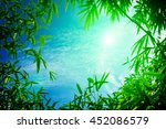 leaf pattern leaves bamboo or... | Shutterstock . vector #452086579