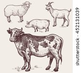set animals   cow  sheep  pig ... | Shutterstock .eps vector #452131039