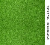 Beautiful green grass texture...