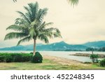 lonely tropical coconut palm on ... | Shutterstock . vector #452248345