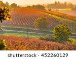 castelvetro  modena  emilia...   Shutterstock . vector #452260129
