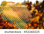 castelvetro  modena  emilia...   Shutterstock . vector #452260225