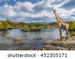 Picturesque Shot Of A Giraffe ...