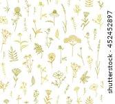 vector hand drawn medicinal... | Shutterstock .eps vector #452452897