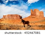Horse In The Monument Valley  ...
