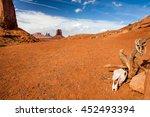 Skull Monument Valley   Desert  ...
