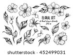 vector illustrations   floral... | Shutterstock .eps vector #452499031