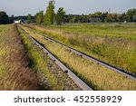 Spilled grain is growing between the rails of prairie train tracks - stock photo