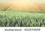 green wheat field. background.... | Shutterstock . vector #452574559