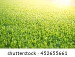 blurred artificial grass in... | Shutterstock . vector #452655661