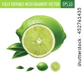 lime on white background.... | Shutterstock .eps vector #452761435