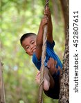 Cute Little Boy Climbing Tree