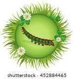 Insect And Summer Nature Icon....