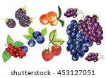 blackberry  blueberry ... | Shutterstock .eps vector #453127051