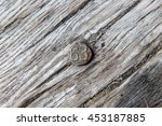 Metal Date Nail Embedded in Railway Tie - stock photo