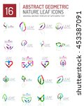 geometric leaf icon set. thin... | Shutterstock . vector #453387091