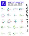 geometric leaf icon set. thin... | Shutterstock . vector #453387625