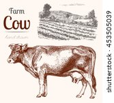Cow 2. Animal Husbandry. Cow...
