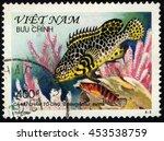 Small photo of SINGAPORE â?? JULY 17, 2016: A stamp printed in Viet Nam shows Epinephetus Meara, circa 2000