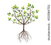 color tree. vector illustration. | Shutterstock .eps vector #453584701