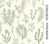 seamless pattern of wild herbs... | Shutterstock .eps vector #453676621