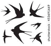 swallow bird graphic silhouette ... | Shutterstock . vector #453691669