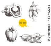 hand drawn sketch collection of ... | Shutterstock .eps vector #453742261
