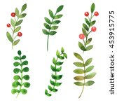 pretty watercolor leaves set   Shutterstock . vector #453915775