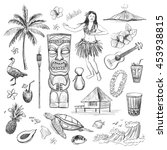 Hawaii Collection Of Vector...