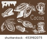 hand drawn set of cocoa... | Shutterstock .eps vector #453982075